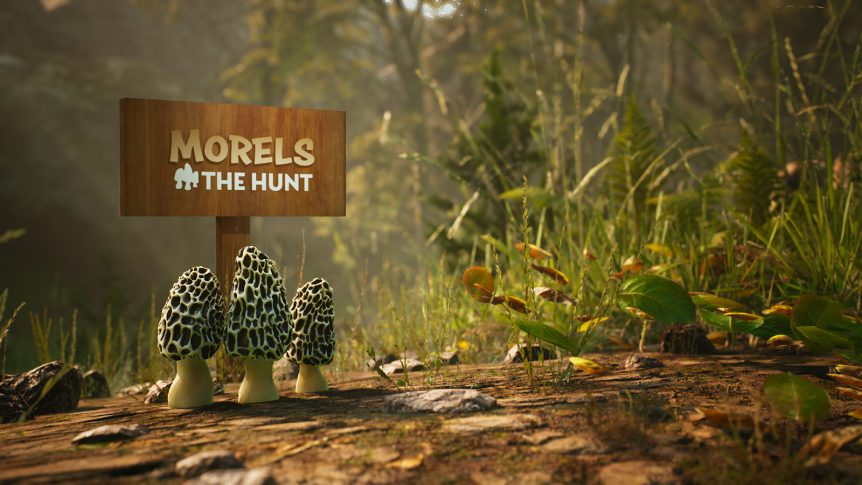 Morels:The Hunt
