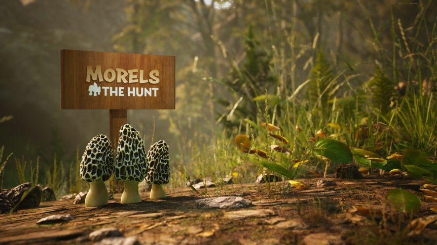 Morels:The Hunt
