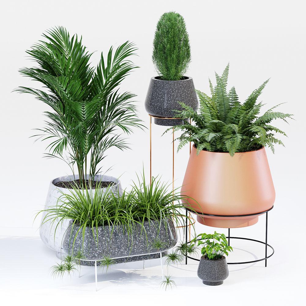 Assorted Planters by lyskanych